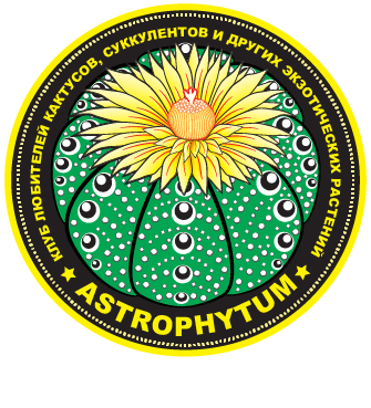 https://astrophytum.kz/